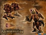 MORROWIND 2011 GRAPHICAL PROJECT